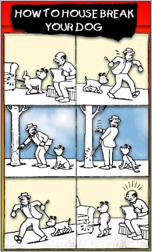 Enseñar al perro